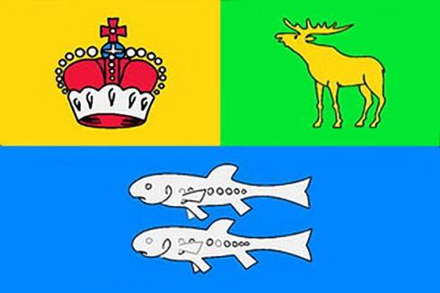 Флаг района Гольяново