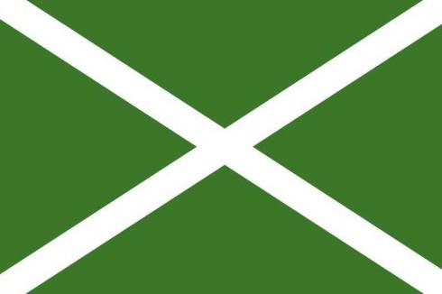 Флаг Таможенной службы РФ