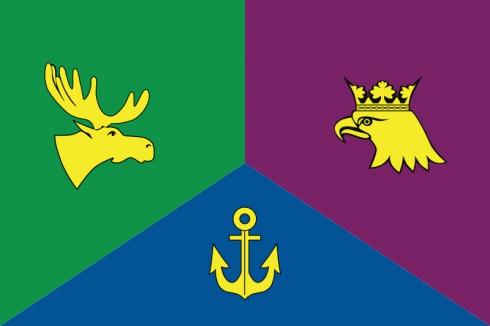 Флаг ВАО Москвы